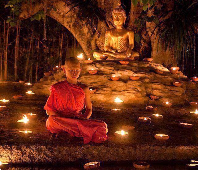 flor de loto y budismo